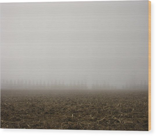 Misty Fields Wood Print