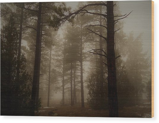 Misty Forest Morning Wood Print