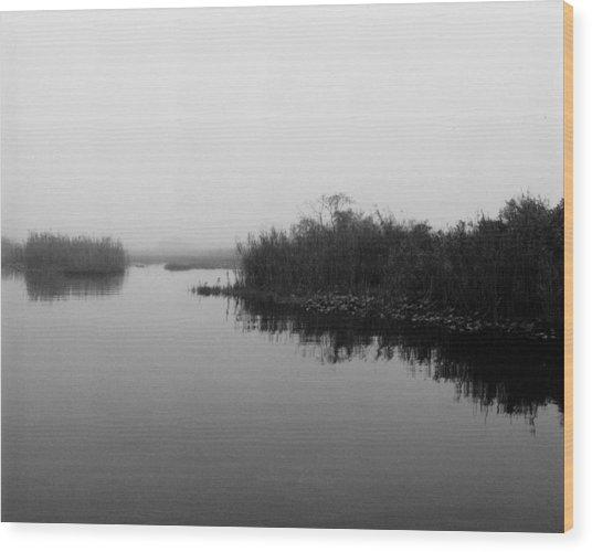Misty Glades Wood Print by Cindy Gregg