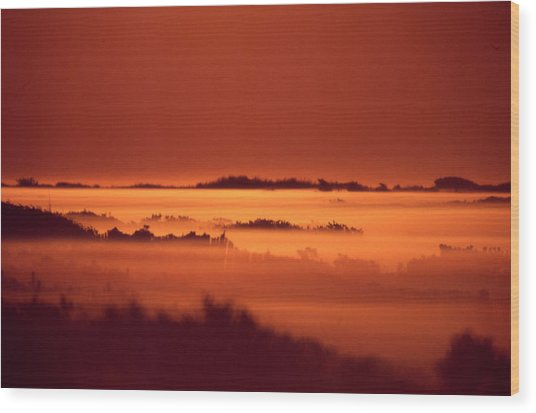Misty Meadow At Sunrise Wood Print