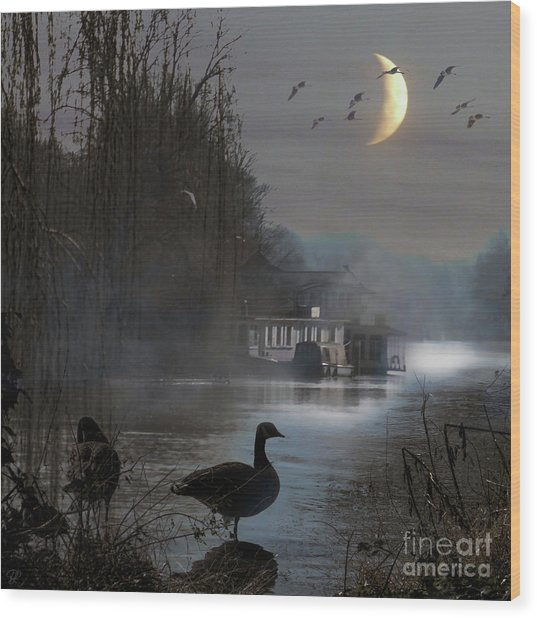 Misty Moonlight Wood Print