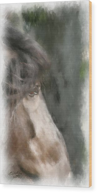 Misty Morn Wood Print by Elzire S