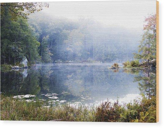 Misty Morning At John Burroughs #1 Wood Print