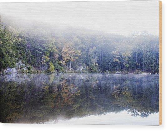 Misty Morning At John Burroughs #2 Wood Print