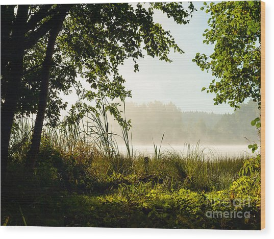Misty Morning Light Wood Print