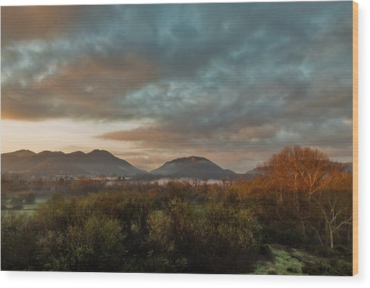 Misty Morning Over The San Diego River Wood Print
