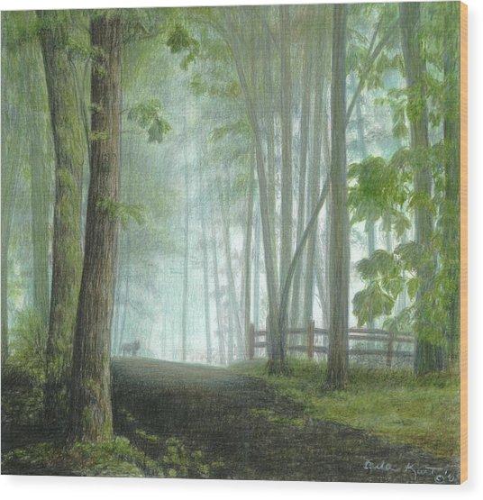 Misty Morning Visitor Wood Print