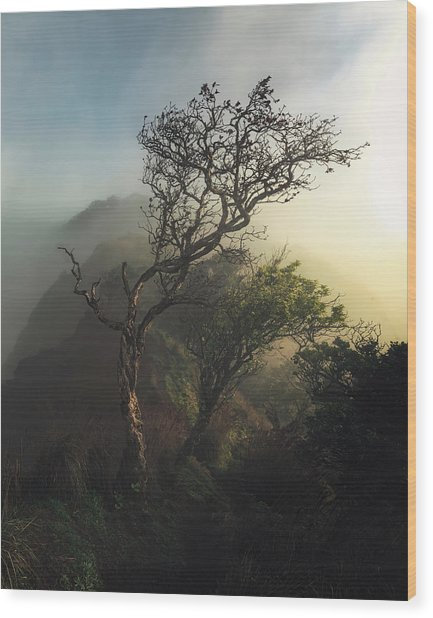 Misty Na Pali Wood Print