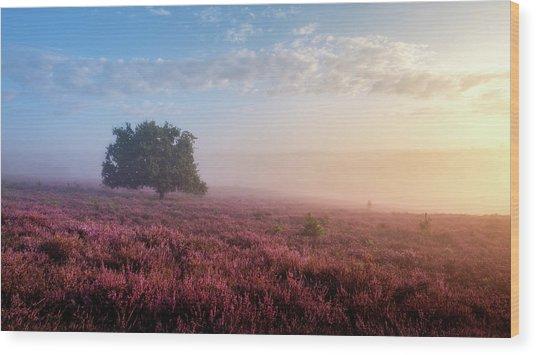 Misty Posbank Wood Print