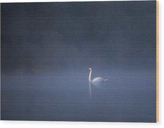 Misty River Swan Wood Print