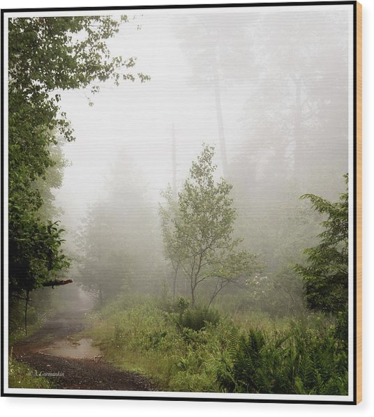 Misty Road At Forest Edge, Pocono Mountains, Pennsylvania Wood Print