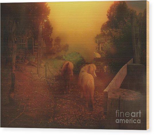 Misty Sundown Wood Print