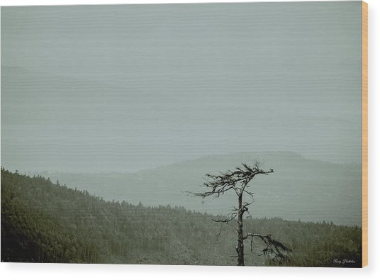Misty View Wood Print