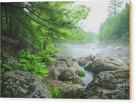Misty Waters Wood Print