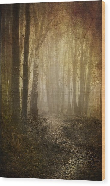 Misty Woodland Path Wood Print