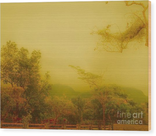 Misty Yellow Hue- El Valle De Anton Wood Print