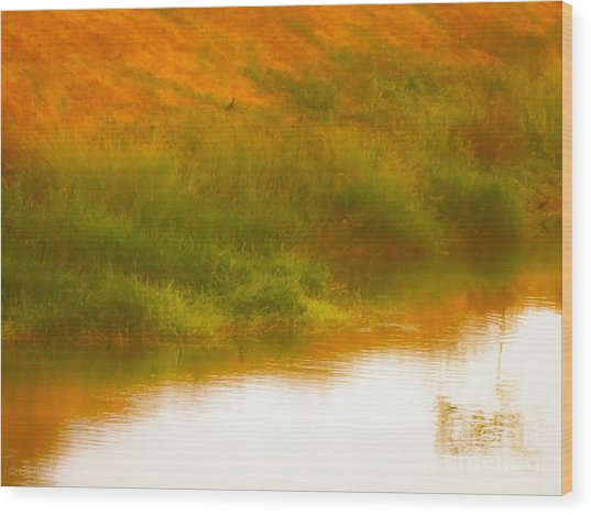 Misty Yellow Hue -lone Jacana Wood Print