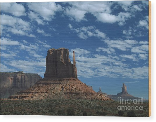Mitten Under A Perfect Sky Wood Print by Stan and Anne Foster