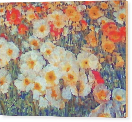 Mixed Poppies Wood Print