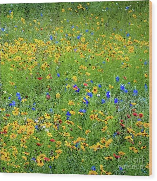 Mixed Wildflowers In Bloom 538 Wood Print