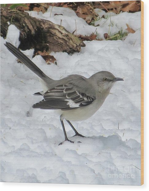 Mockingbird In The Snow Wood Print