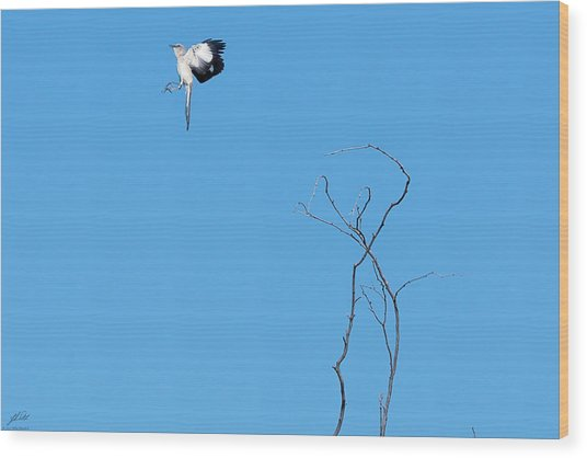 Mockingbird Up Wood Print