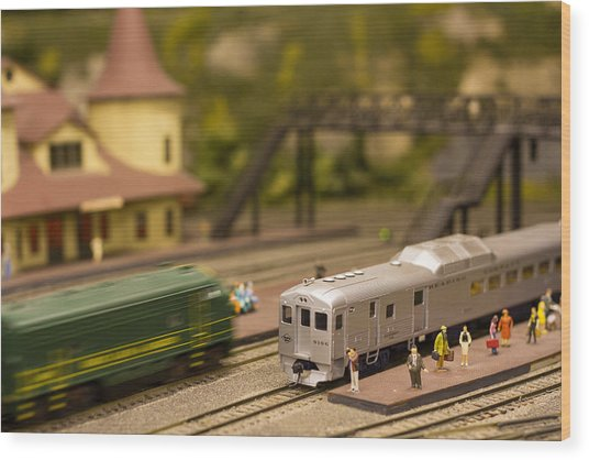 Model Trains Wood Print
