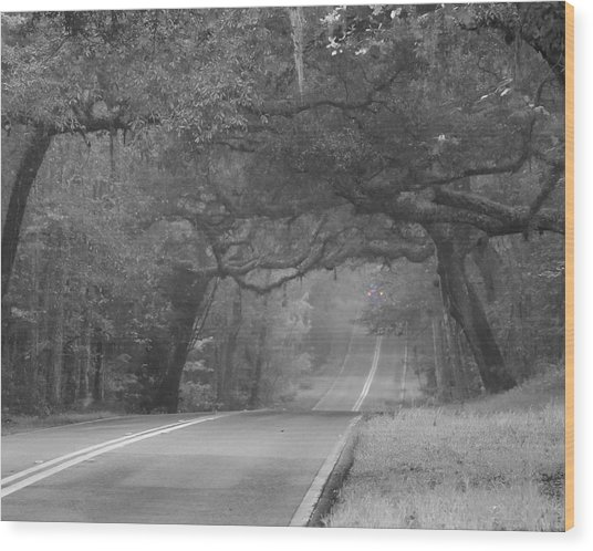 Modern Day Sleepy Hollow Wood Print