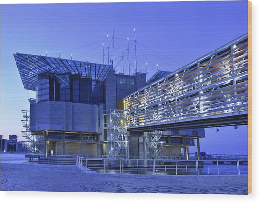 Modern Lisbon Aquarium Wood Print