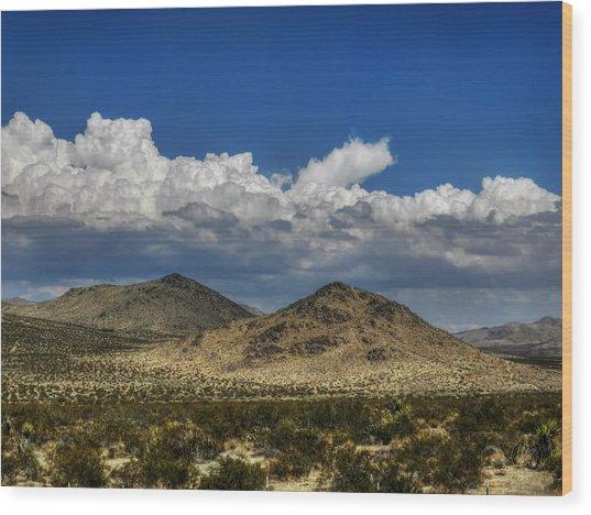 Mojave 020 Wood Print by Lance Vaughn