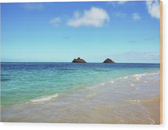 Mokulua Islands Wood Print
