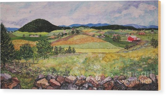Mole Hill In Summer Wood Print by Judith Espinoza