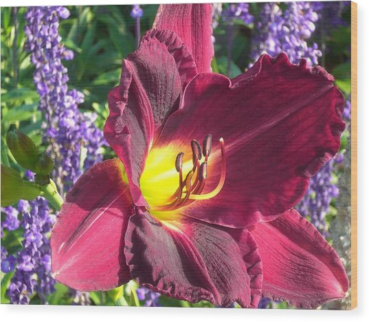 Mom's Lilly Wood Print by Wendy Robertson