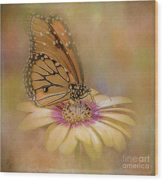 Monarch On A Daisy Mum Wood Print