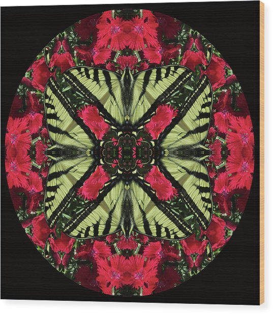 Monarch On Dianthus Kaleidoscope Wood Print