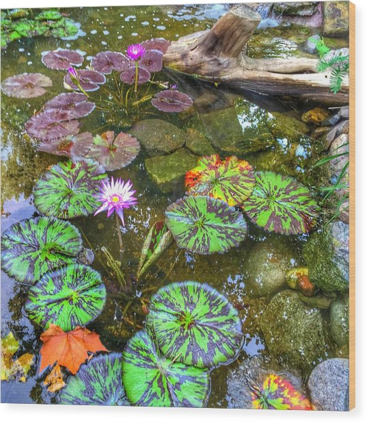 Monet's Pond At The Fair Wood Print