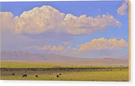 Mono Lake Rangelands Wood Print by Gus McCrea