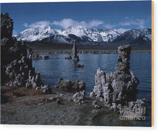 Mono Lake-signed Wood Print