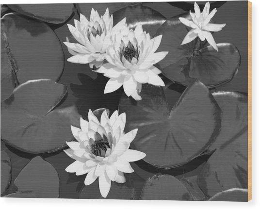 Monochrome Lilies Wood Print by Milena Ilieva