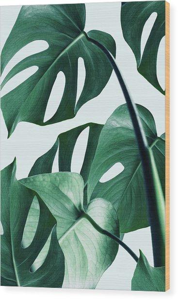 Monstera Wood Print