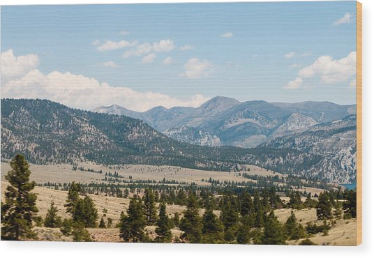 Wood Print featuring the photograph Montana Mountains by Rosemary Legge