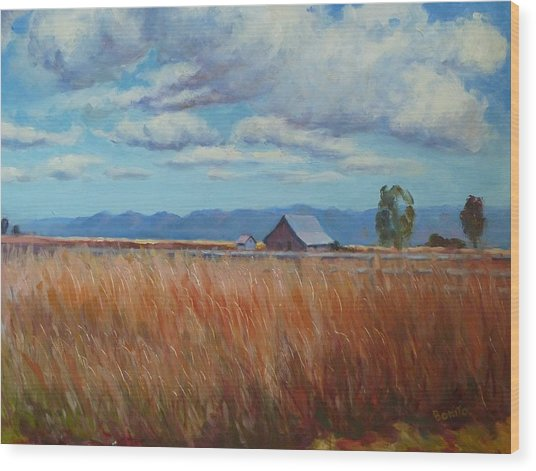 Montana Prairie In The Fall Wood Print