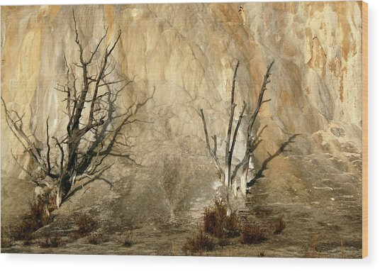 Montana Rock Wall Wood Print