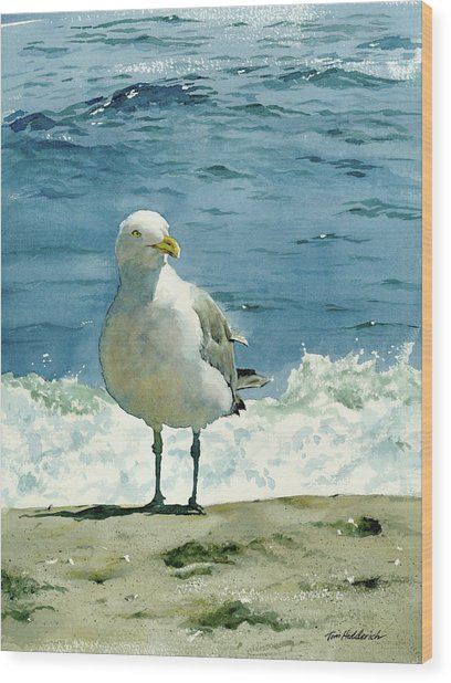 Montauk Gull Wood Print