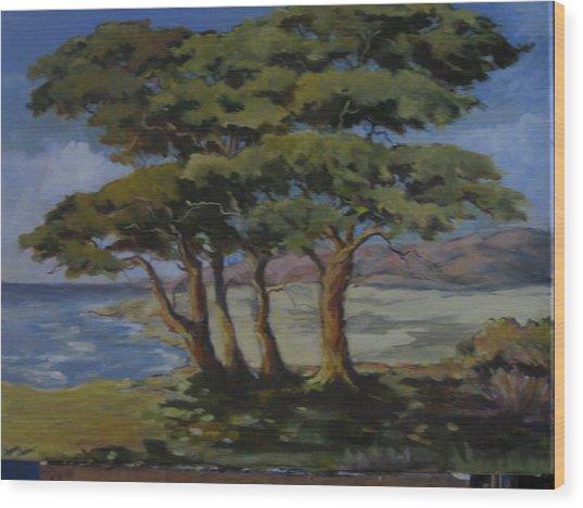 Monterey Bay Trees Wood Print by Barbara Moore