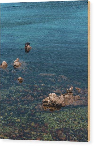Monterey Wood Print