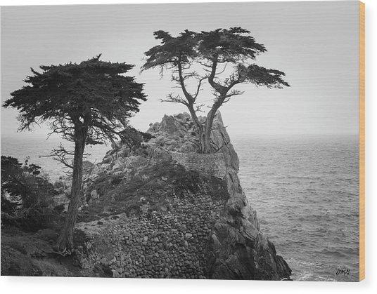 Monterey Peninsula II Bw Wood Print