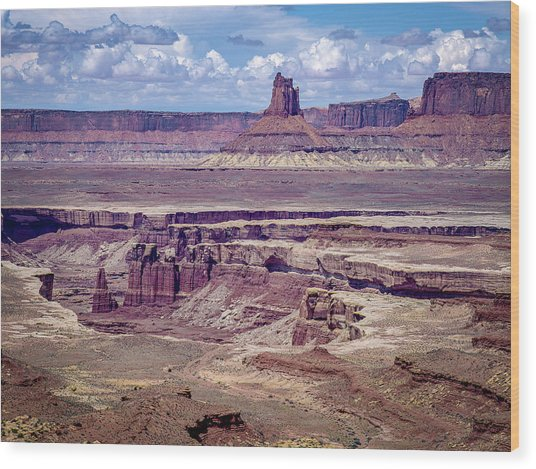Monument Basin, Canyonlands Wood Print