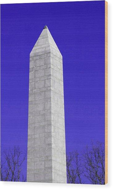 Monument Blue Wood Print by Tina B Hamilton