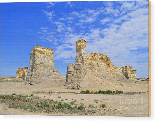Monument Rocks In Kansas 2 Wood Print